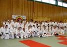 Ju-Jutsu Landeslehrgang 27.4.2013