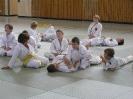 Ju-Jutsu Landestechniklehrgang 2010 für Kinder