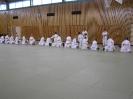 Ju-Jutsu Landestechniklehrgtang für Kinder 2010