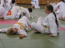 Ju-Jutsu Lehrgang 15.05.2004