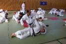Ju-Jutsu Lehrgang 24.05.2003