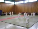 Ju-Jutsu Gürtelprüfung Kinder 04.06.2008