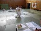 Ju-Jutsu Prüfung Juni 2017_37